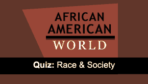 Brain Teaser: Race &amp; Society 
